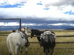 tripplanning_horseback